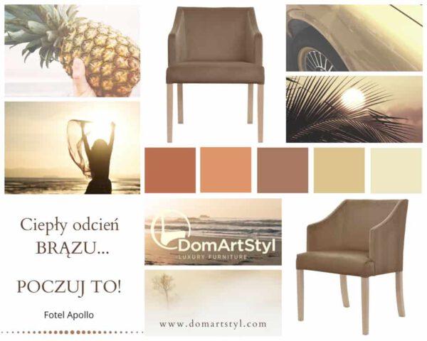 brązowy fotel apollo