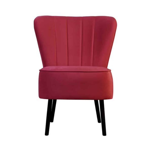 Fotel Noa, french velvet 662 (1) (Copy)