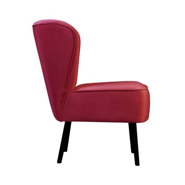 Fotel Noa, french velvet 662 (3) (Copy)